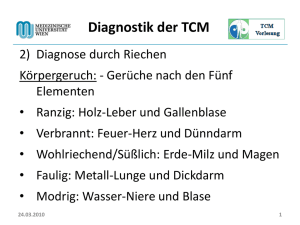 24.03.2010 1 Diagnostik der TCM