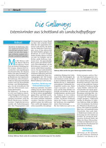 2015-36-37_Die Galloways - Extensivrinder aus Schottland