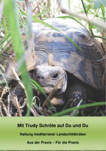 Rep Hoch Hoch Wasserschildkröten Rep Wasserschildkröten Wasserschildkröten PkiZXu