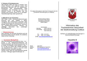 Flyer Hepatitis B