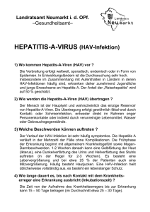 HEPATITIS-A-VIRUS (HAV-Infektion)