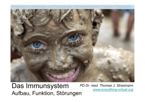 Immunsystem - everything