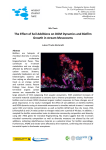 The Effect of Soil Additions on DOM Dynamics and Biofilm Growth in