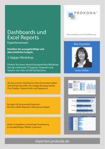 Dashboards und Excel Reports