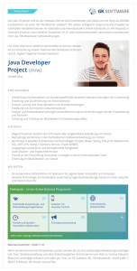 Java Developer Project (m/w)