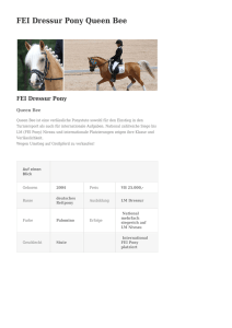 FEI Dressur Pony Queen Bee