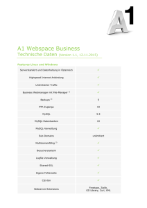 A1 Webspace Business – Technische Daten
