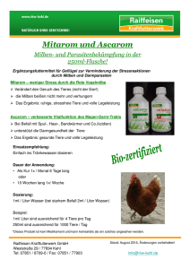 Flyer Mitarom und Ascarom August 2015