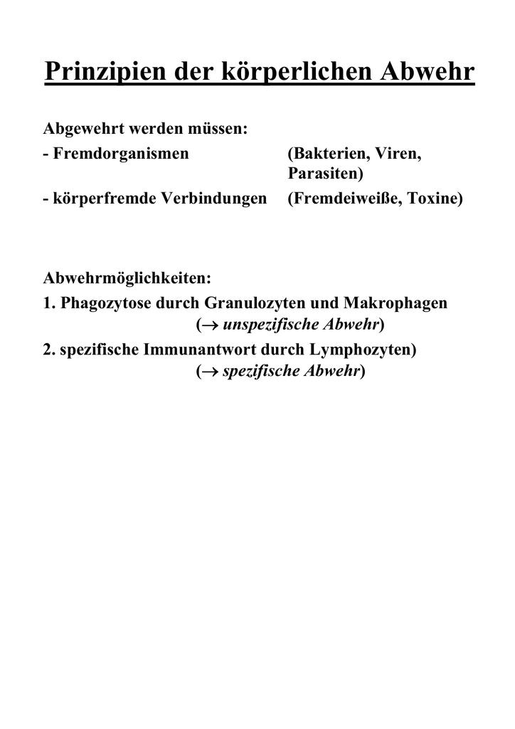 Lymphatische Organe