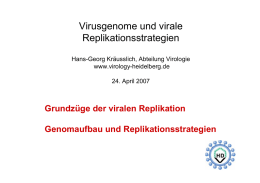 Virusgenome und virale Replikationsstrategien