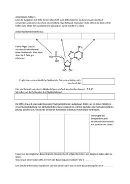 Lösungen - NGFN-2