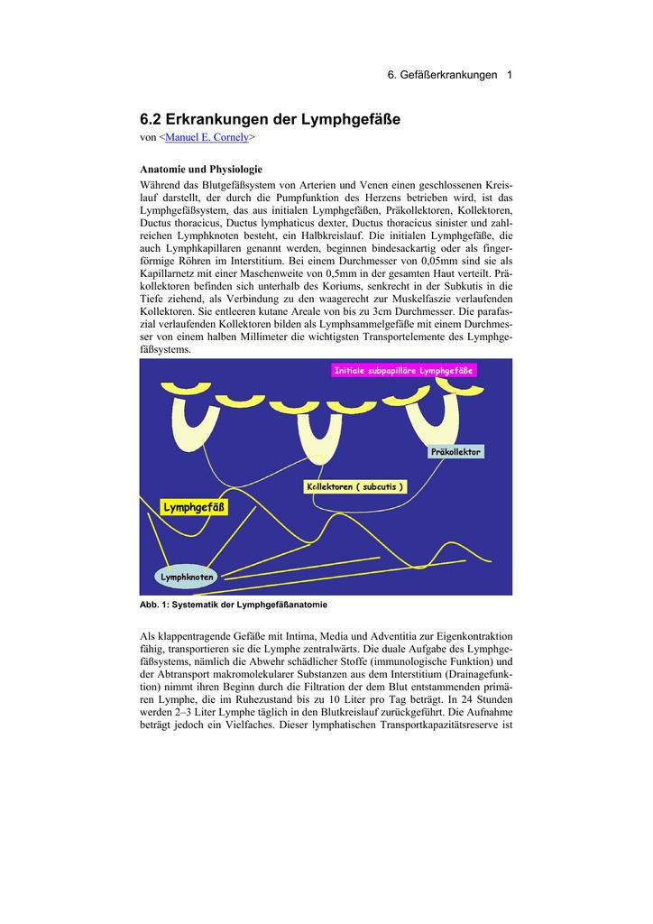 Erkrankungen der Lymphgefäße - Derma-Net