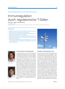 Immunregulation durch regulatorische T-Zellen