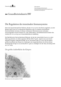 Die Regulation des intestinalen Immunsystems