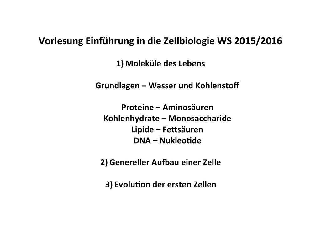 Niedlich Kohlehydrate Lipide Proteine Ideen - Menschliche Anatomie ...