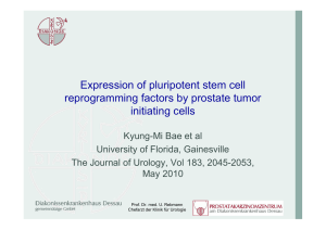 Expression of pluripotent stem cell reprogramming factors by