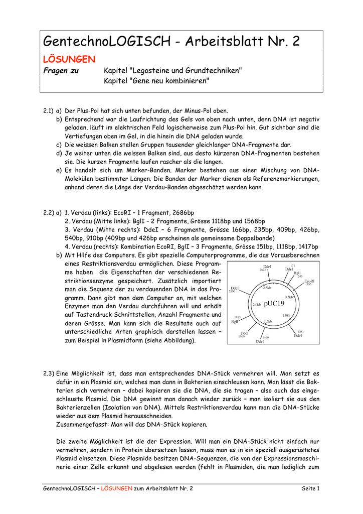 Ungewöhnlich Iis Dammam Arbeitsblatt Ideen - Arbeitsblatt Schule ...