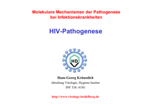 HIV-Pathogenese