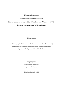 Dokument 1 - E-Dissertationen der Universität Hamburg