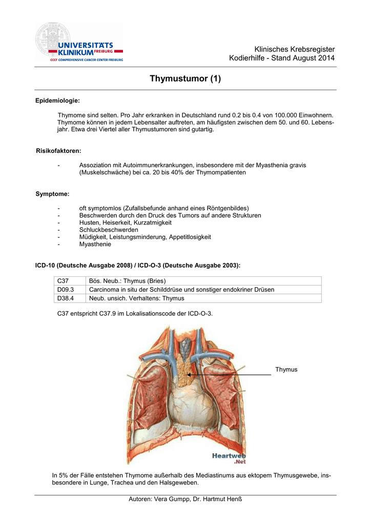 endokriner tumor darm