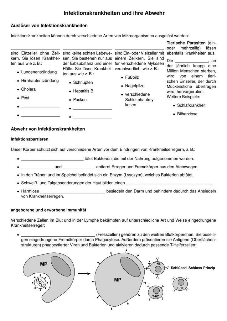 Charmant Viren Bakterien Arbeitsblatt Ideen - Arbeitsblätter für ...