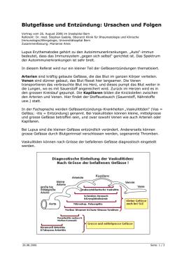 Kapitel: Grundwissen Anatomie