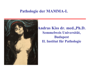Pathologie der MAMMA-I. Andras Kiss dr. med.,Ph.D.