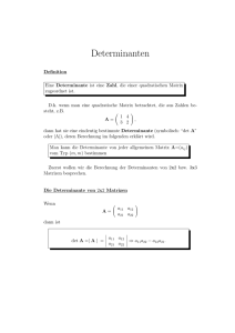 Determinanten - Mathe Online