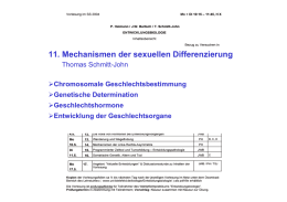 11. Mechanismen der sexuellen Differenzierung