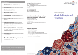 Flyer MSc Molekularbiologie und Physiologie