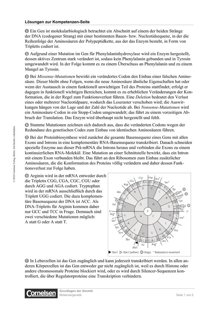 Lösungen Seite 105