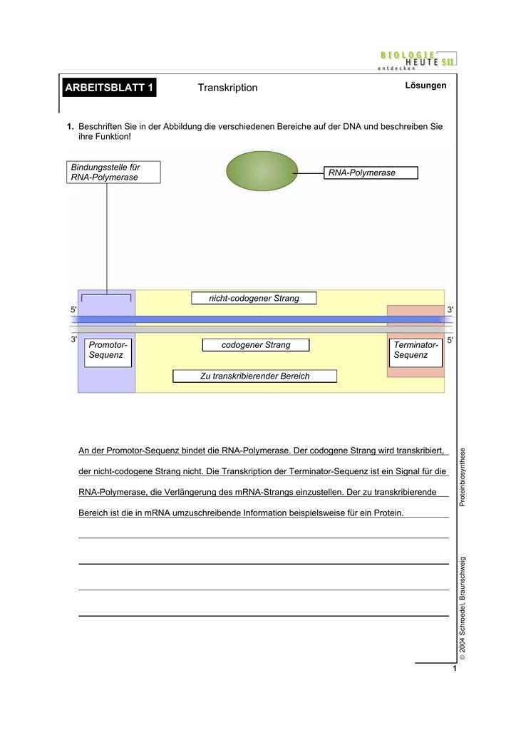 Arbeitsblatt 1 Transkription