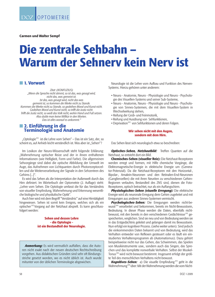 Die zentrale Sehbahn – Warum der Sehnerv kein Nerv ist