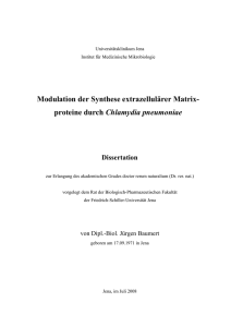 Modulation der Synthese extrazellulärer Matrix