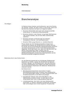 Branchenanalyse - managerTool