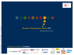 Management Summary - Business Performance Index