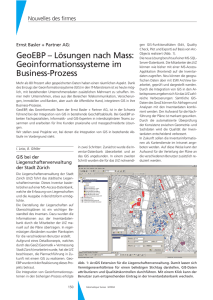 Geoinformationssysteme im Business-Prozess