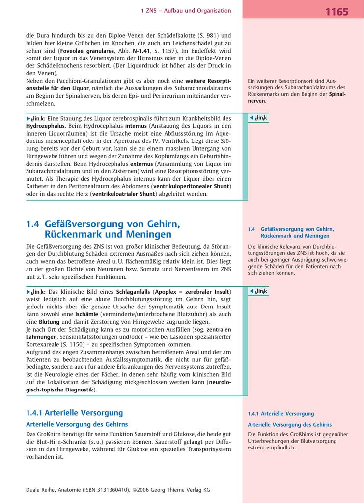 1.4 Gefåßversorgung von Gehirn, Rįckenmark und Meningen