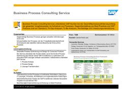 Business Process Consulting Service