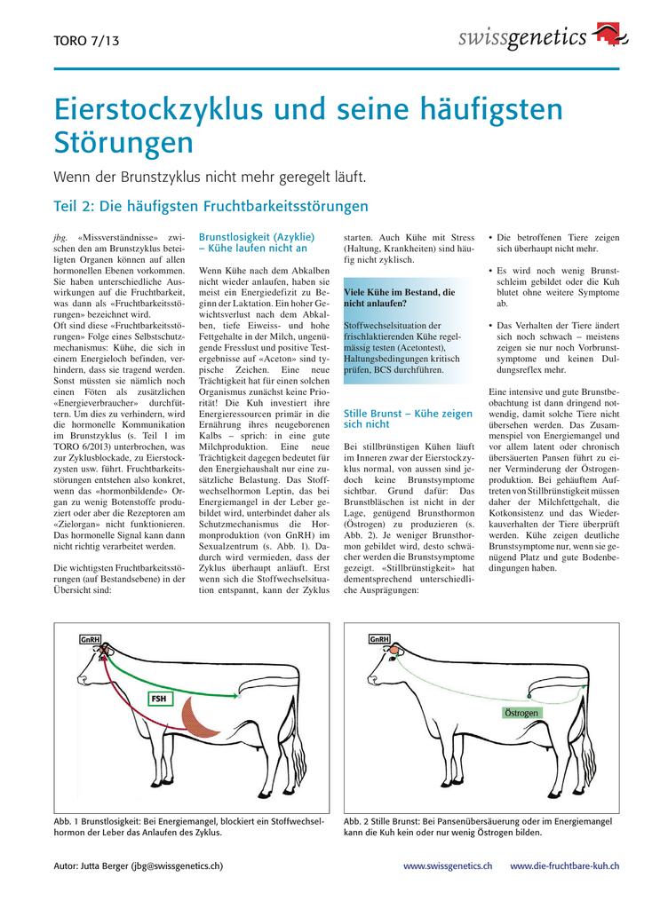 Schön Magen Bild Lage Körper Galerie - Anatomie und Physiologie des ...