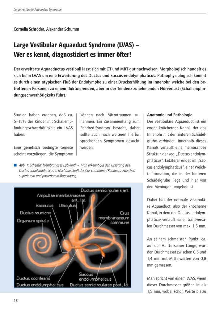 Groß Vestibuläre Anatomie Und Physiologie Ideen - Menschliche ...