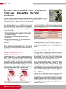 Symptome – Diagnostik – Therapie