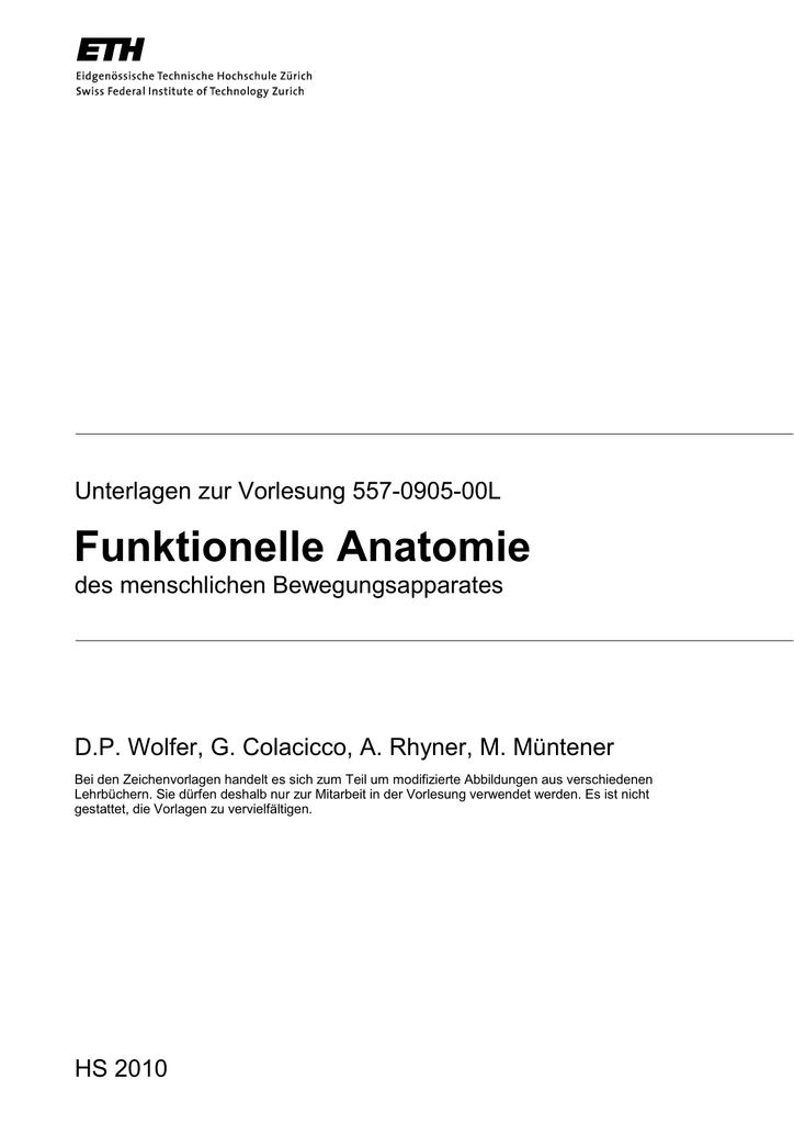 Groß Funktionelle Anatomie Der Leber Fotos - Anatomie Ideen ...