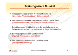 Trainingsziele Muskel - BSA