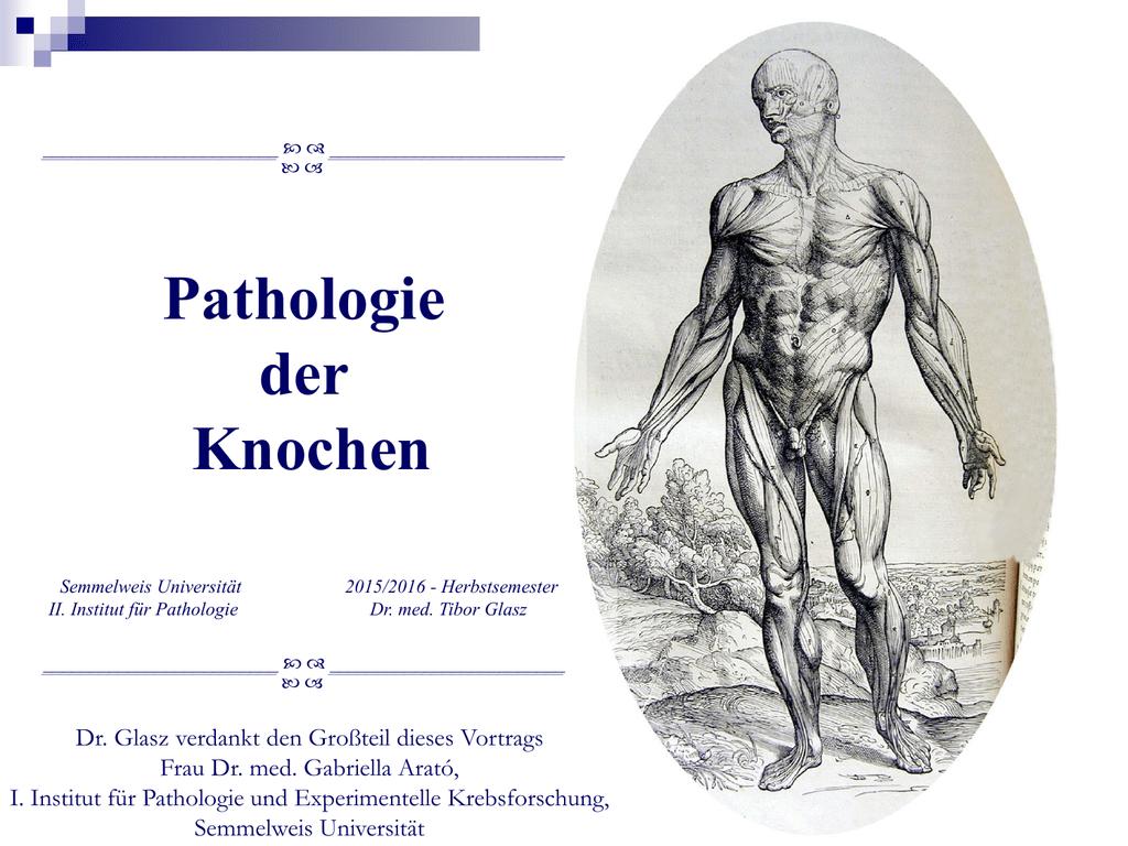 Pathologie der Knochen
