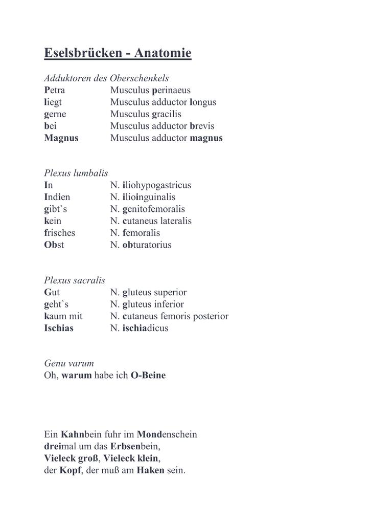 Eselsbrücken - Anatomie - Biochemie