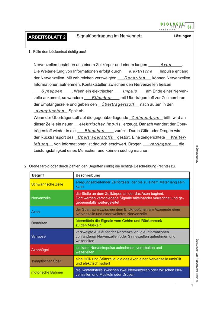 Erfreut Zellmembran Arbeitsblatt Arbeitsblatt Galerie - Ideen färben ...