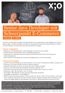 Senior Java Developer mit Schwerpunkt E-Commerce