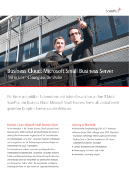 Business Cloud: Microsoft Small Business Server