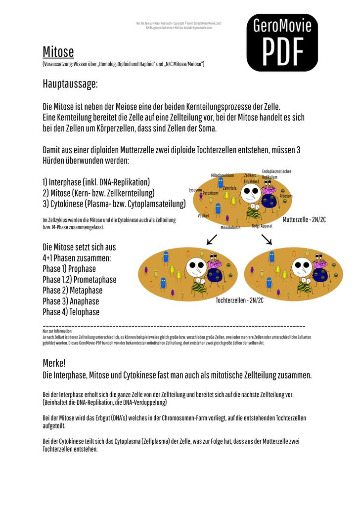Mitose - GeroMovie-PDF